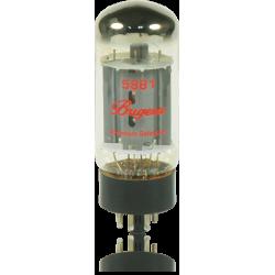 5881 Bugera lampa elektronowa